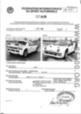 Passeport FISA Ford RS200