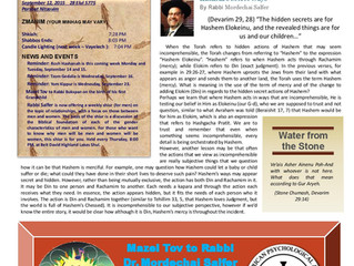 Newsletter #47 Rosh Hashanah Edition