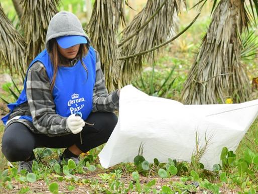 Corona promove desafio Livre de Plástico