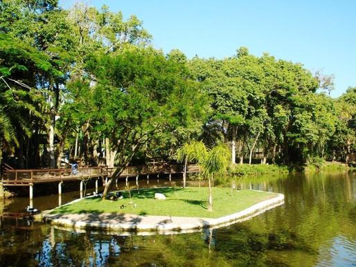 Entenda a polêmica em torno do Parque Ecológico do Córrego Grande