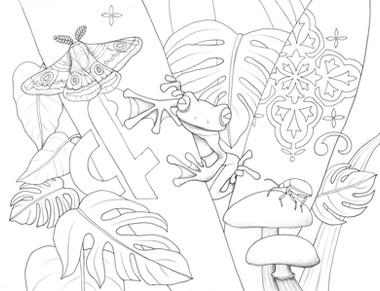 Frog+Moth+Shrooms