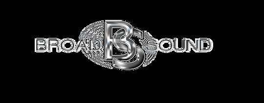 BS logo Trans.png
