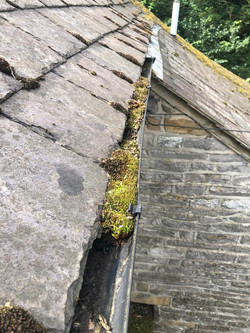 Gutter cleaning - moss removal