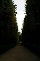 rodin8.jpg