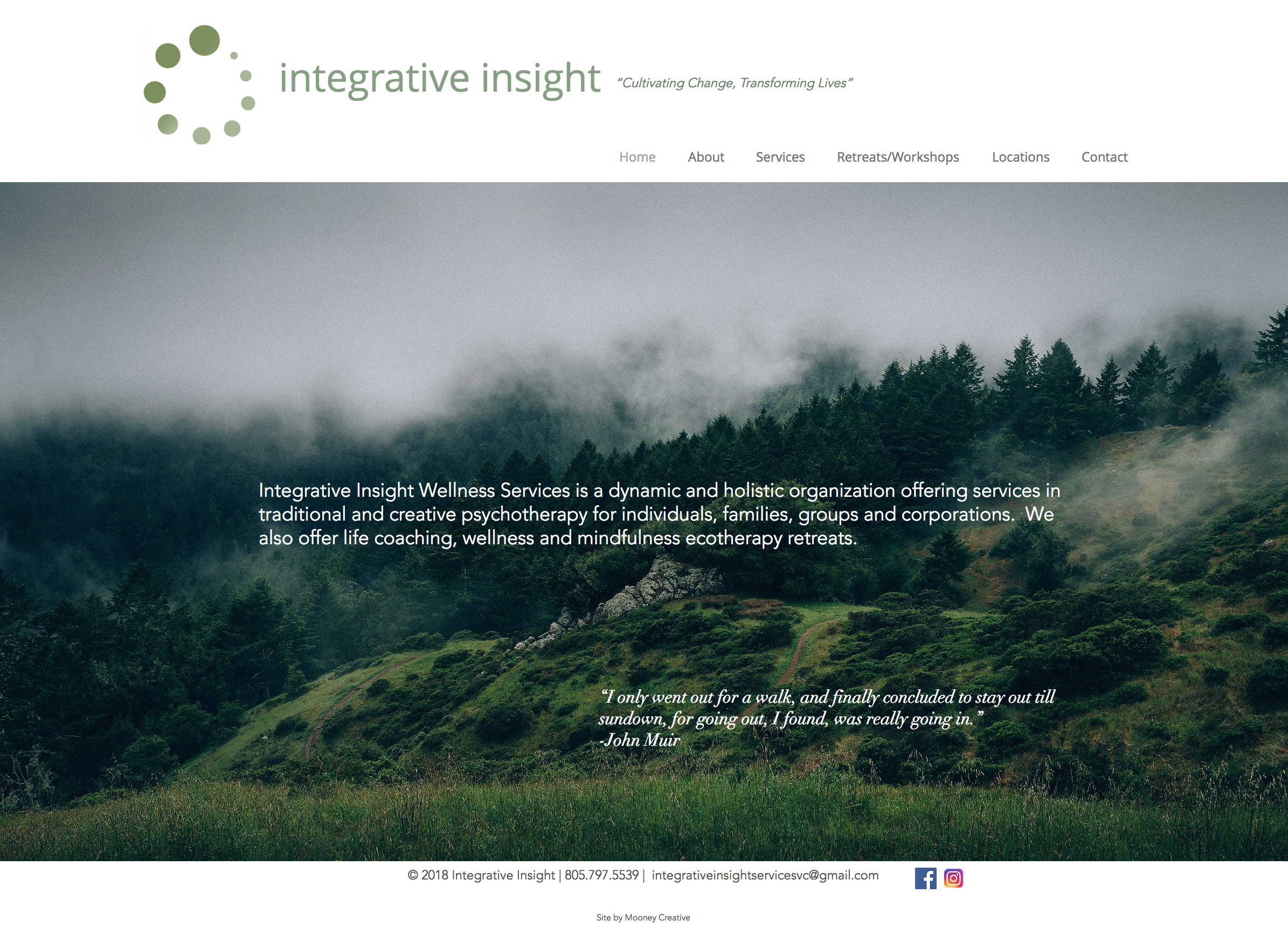Website for Integrative Insight