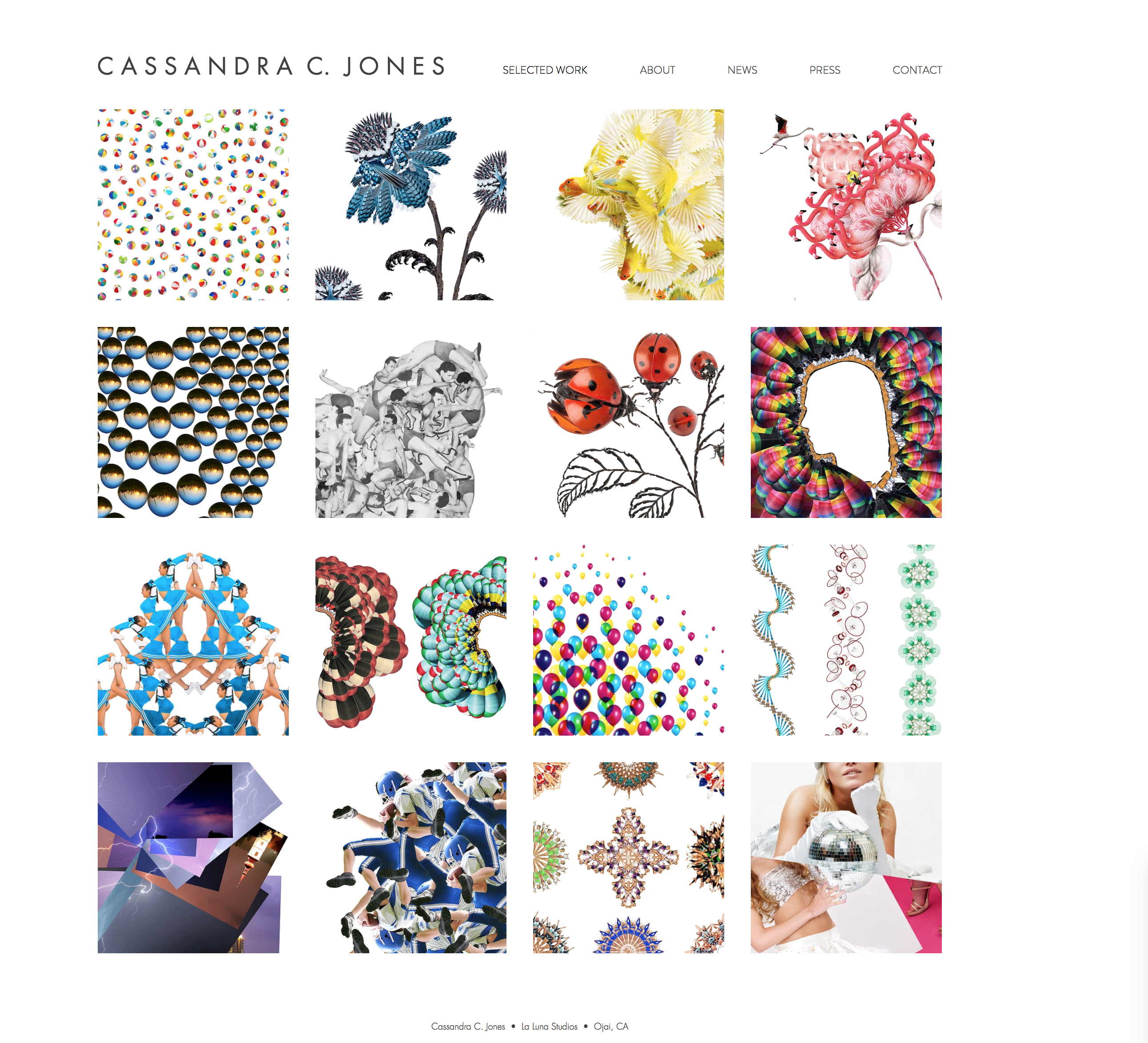 Website for Cassandra C Jones