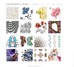 Website for Cassandra C Jones