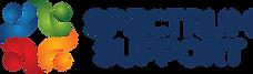 SS Logo 2020.png