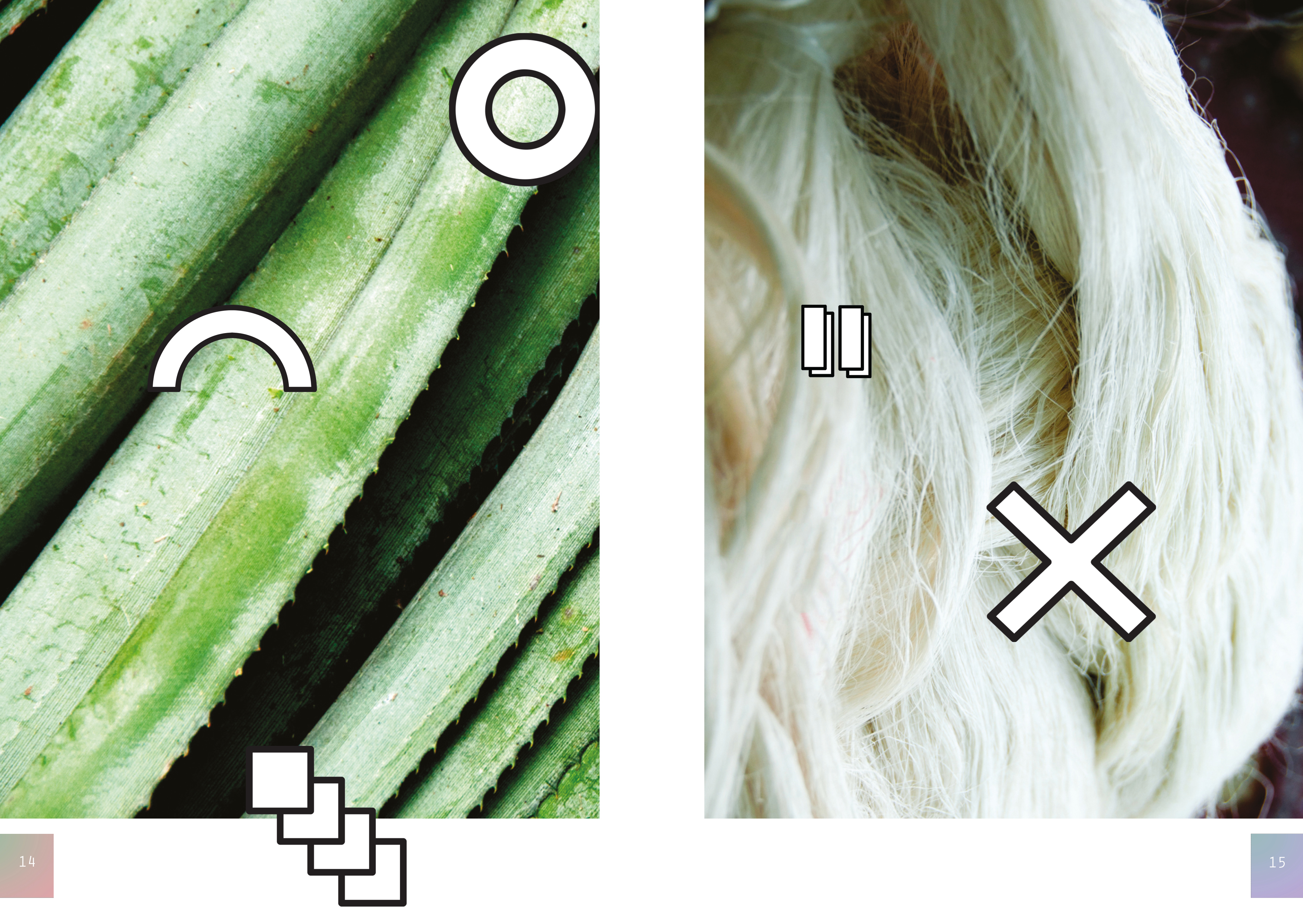 Pinatex 5-6.jpg