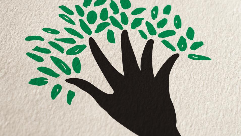 Mentoring Tree Foundation