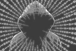 hacker1_sw2.jpg