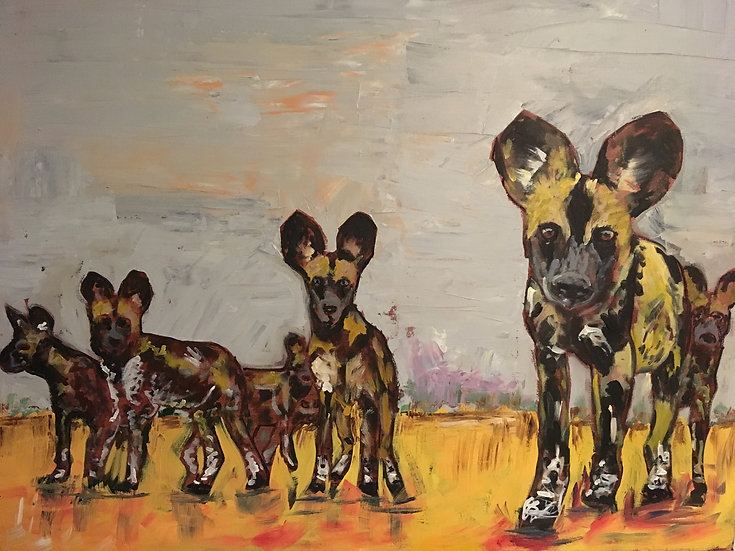 African Wild Dogs.  Owned by Jane Goodall