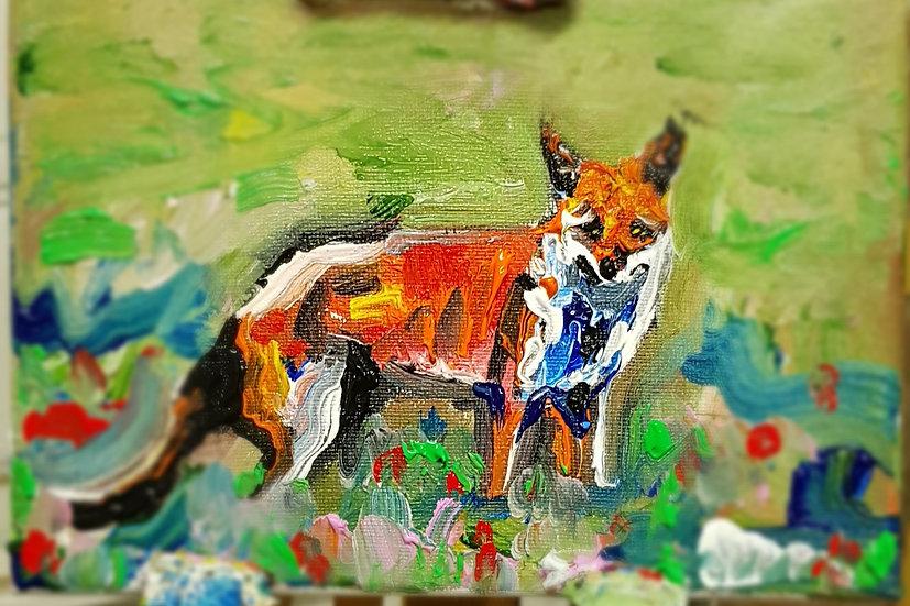 Little fox in meadow.