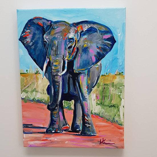 Elephant in the sun.