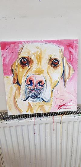 Labrador commission portrait. Acrylic.   SOLD