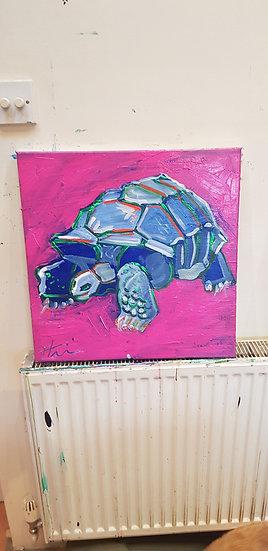 Tortoise.   Acrylic on canvas.