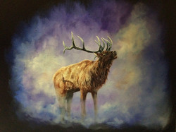 Spirit of the Elk
