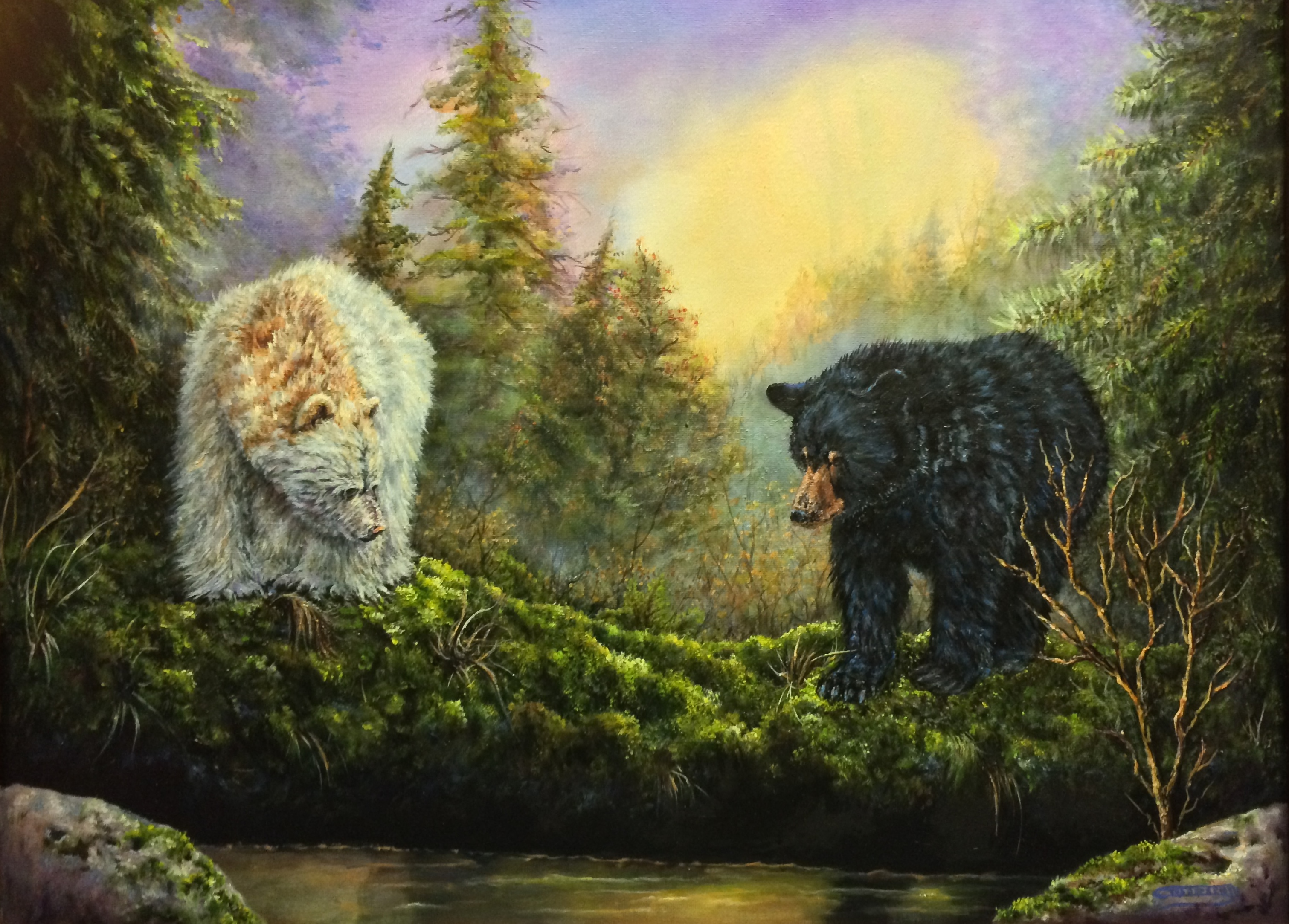 Spirit Bear, Kermode Bears