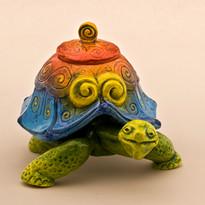 Ferg Turtle J.jpg