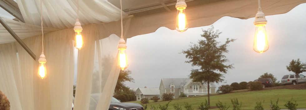 Vintage Bulbs - White.jpg