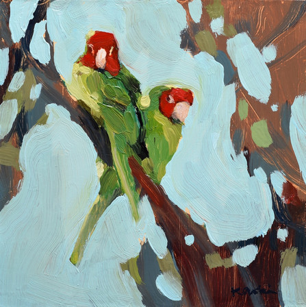 Parrot Pair #4