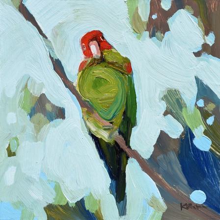 Parrot #2