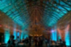 Globe Light and String Light Canopy.jpeg