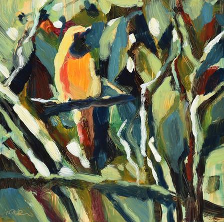 Jungle Bird