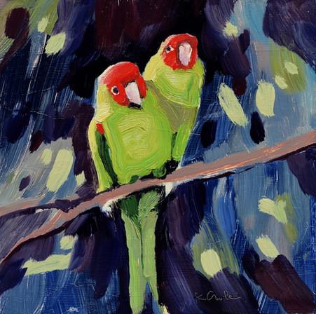 Parrot Pair #2