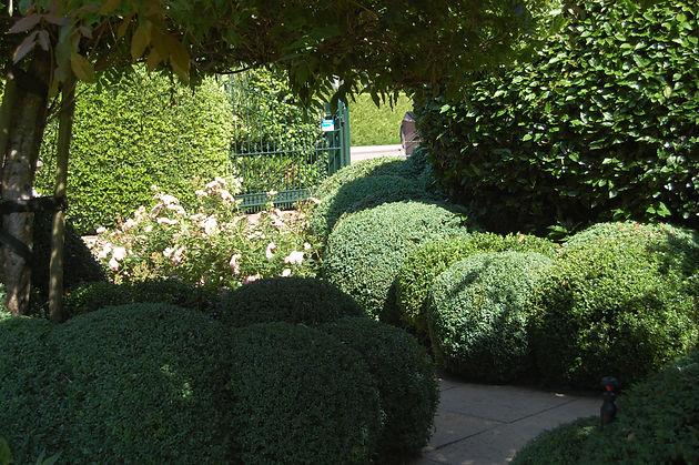 Tuin Laten Doen : Tuinonderhoud laten doen bas groeneweg tuinaanleg