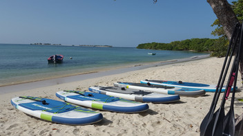 Paradise Beach, Many SUP sizes to meet your needs