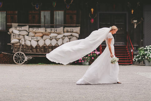 Schleier Braut Portrait Bild