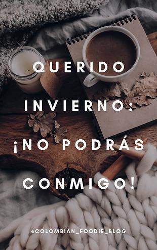 PDF INVIERNO-2-2.png