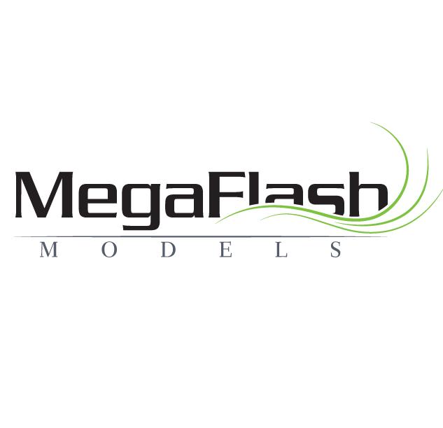 MegaFlash Models