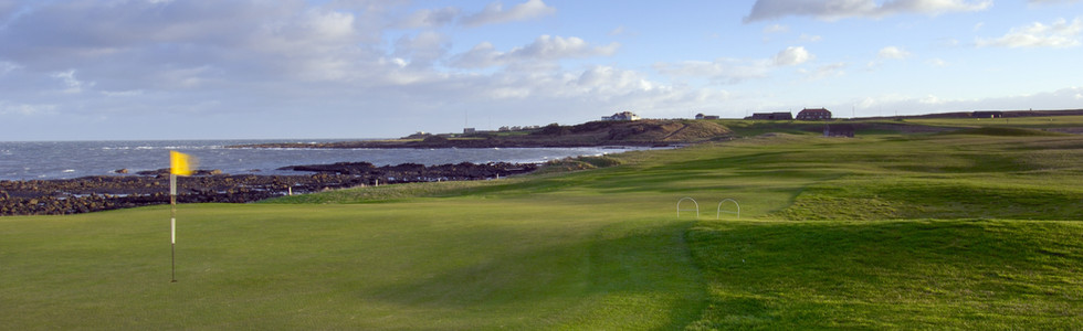 2nd green, looking back to 2nd tee.jpg