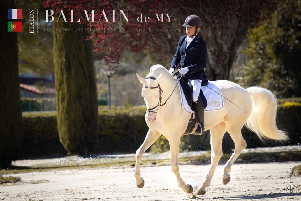 Balmain (74,5 pts)