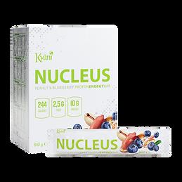WEBSITE_1024x1024_Nucleus-1.png