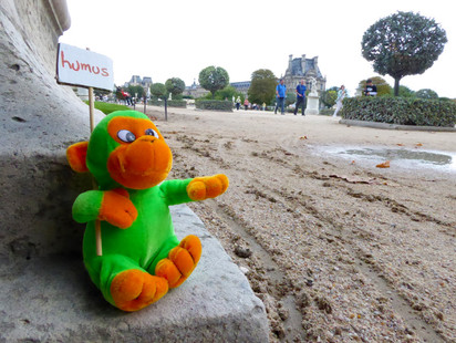 zanimot-HUMUS-XavierDaniel-120210911-Paris.jpg