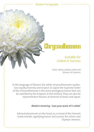 floral cards2.jpg