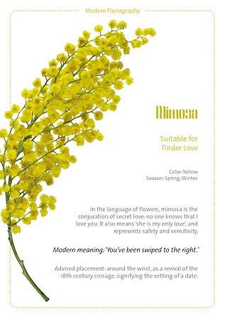 floral cards.jpg