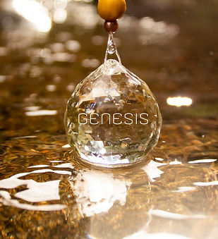 genesis promo pic.jpg