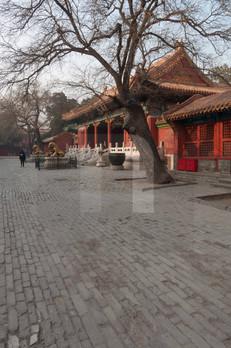 Forbidden City Courtyard I