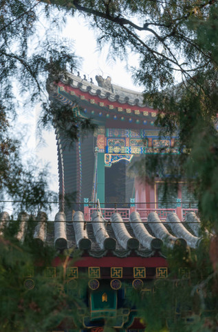 Summer Palace Roofs