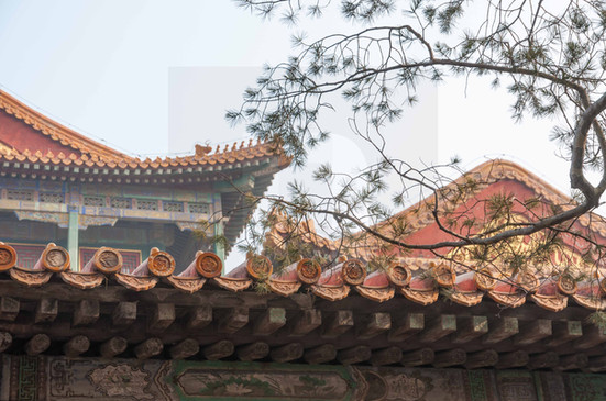 Forbidden City Roofs