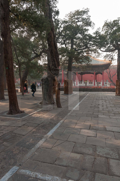 Forbidden City VI