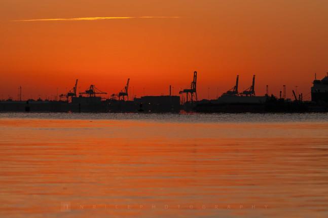 Morning Industry