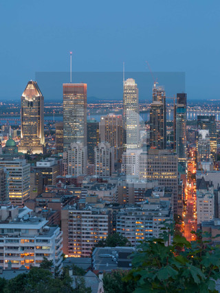 Mont Royal Skyline II