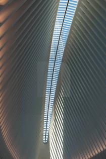 Oculus III
