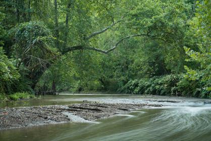 Peters Creek II
