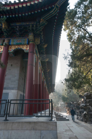 Summer Palace Roofs II